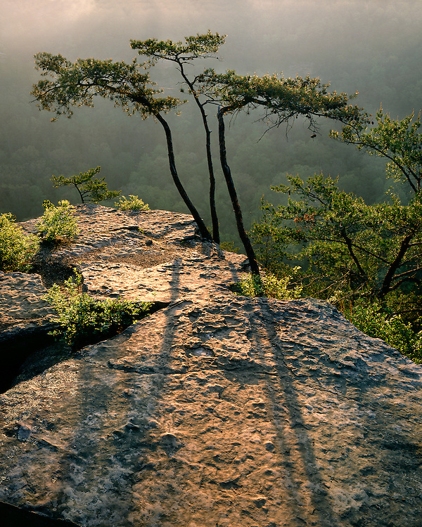 Sunrise light on the cliffs at Fall Creek Falls State Park, TN