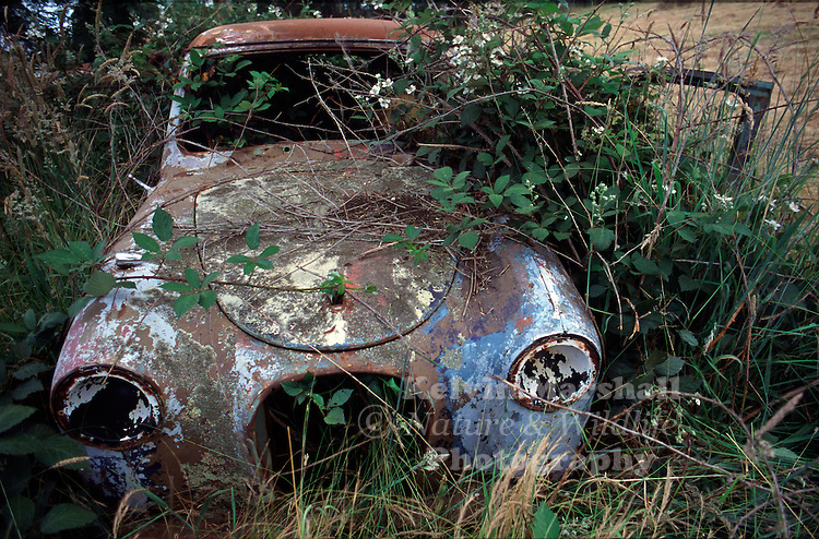 A very old motor vehicle left on a farmers property, slowly left for mother nature to take over.