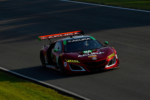 IMSA WeatherTech SportsCar Championship<br /> Michelin GT Challenge at VIR<br /> Virginia International Raceway, Alton, VA USA<br /> Saturday 27 August 2017<br /> 86, Acura, Acura NSX, GTD, Oswaldo Negri Jr., Jeff Segal<br /> World Copyright: Richard Dole<br /> LAT Images<br /> ref: Digital Image _RD27882