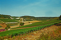West of the Chablis village Fleys: Cote des Pres Girots vineyards