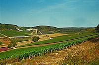 West of the Chablis village Fleys: Cote des Pres Girots vineyards