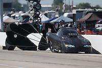 Apr. 28, 2013; Baytown, TX, USA: NHRA top alcohol funny car driver Mark Billington during the Spring Nationals at Royal Purple Raceway. Mandatory Credit: Mark J. Rebilas-