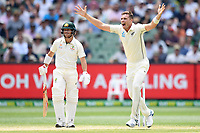 28th December 2019; Melbourne Cricket Ground, Melbourne, Victoria, Australia; International Test Cricket, Australia versus New Zealand, Test 2, Day 3; Tim Southee of New Zealand appeals for a wicket
