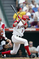 Darin Erstad of the Los Angeles Angels bats during a 2002 MLB season game at Angel Stadium, in Anaheim, California. (Larry Goren/Four Seam Images)