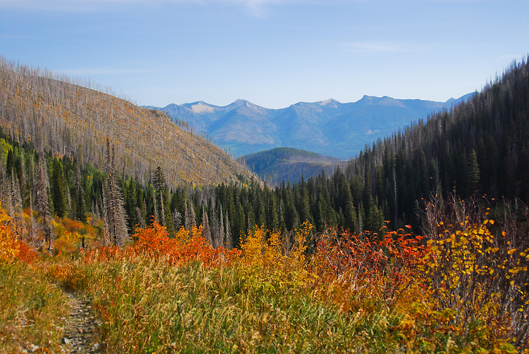 Looking at the Great Bear Wilderness from the Clayton Lake trail.