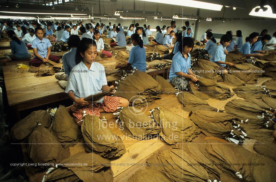 INDONESIA Java Jember, women sort tobacco leaves in factory / INDONESIA Java Jember, Frauen sortieren Tabakblaetter fuer Zigarren in einer Fabrik