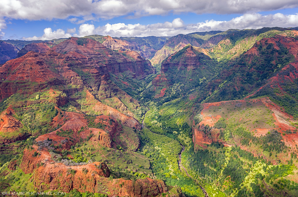 Waimea Canyon Vista