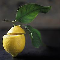 Europe/France/Provence-Alpes-Côte d'Azur/06/Alpes-Maritimes/Menton: Citrons de Menton - Stylisme : Valérie LHOMME //  // France, Alpes Maritimes, Menton, Menton lemons