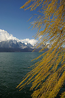 The alps and Lake Léman close to Montreux, Switzerland.