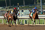 ARCADIA, CA  DECEMBER 28: #7 Hard Not to Love, ridden by Mike Smith, takes on #5 Bellafina, ridden by Victor Espinoza,in the stretch of the La Brea Stakes (Grade l) on December 28, 2019 at Santa Anita Park in Arcadia, CA (Photo by Casey Phillips/Eclipse Sportswire/CSM)
