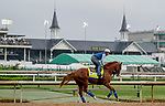 LOUISVILLE, KENTUCKY - MAY 02: Improbable, trained by Bob Baffert, exercises in preparation for the Kentucky Derby at Churchill Downs in Louisville, Kentucky on May 2, 2019. Scott Serio/Eclipse Sportswire/CSM