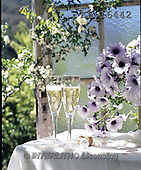 Interlitho, WEDDING, HOCHZEIT, BODA, photos+++++,2 glasses, table,window,KL16442,#w#