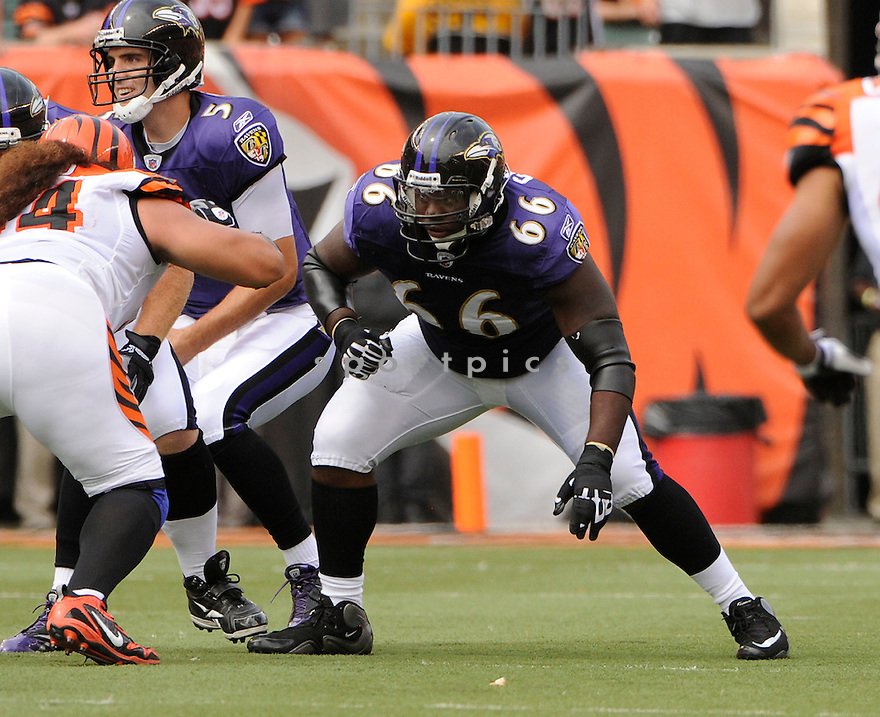BEN GRUBBS, of the Baltimore Ravens in action during the Ravens game against the Cincinnati Bengals on September 19, 2010 Paul Brown Stadium in Cincinnati, Ohio...The Bengals win 15-10