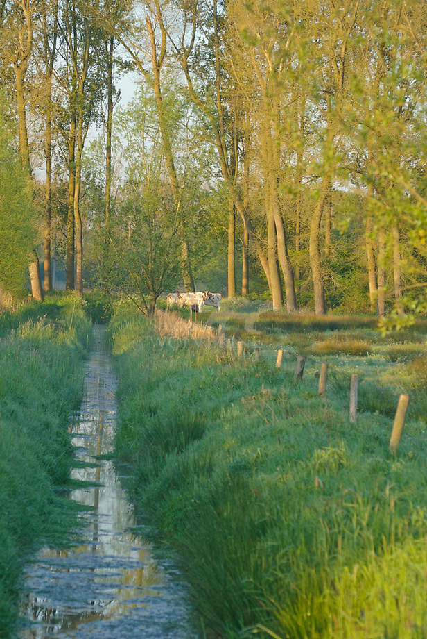 Slootje, landhgoed Haanwijk