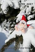 Helga, CHRISTMAS SYMBOLS, WEIHNACHTEN SYMBOLE, NAVIDAD SÍMBOLOS, photos+++++,DTTH9887,#xx#