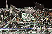 PALMIRA - COLOMBIA, 13-11-2019: Hinchas del Cali animan a su equipo durante partido entre Deportivo Cali e Independiente Santa Fe por la fecha 2, cuadrangulares semifinales, de la Liga Águila II 2019 jugado en el estadio Deportivo Cali de la ciudad de Palmira. / Fans of Cali cheer for their team during match for the date 2, quadrangular semifinals, as part Aguila League II 2019 between Deportivo Cali and Independiente Santa Fe at Deportivo Cali stadium in Palmira city. Photo: VizzorImage / Gabriel Aponte / Staff