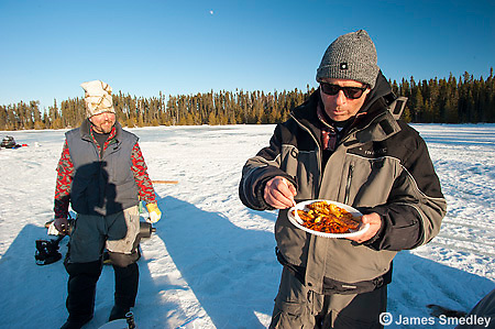 A meal of fish on the ice