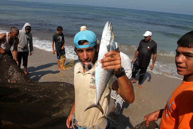 A Palestinian fisherman displays a fish after he pull his nets in the Gaza port on Sept. 27,2010 on the day of supposing to arrive a boat carrying 9 Jewish activists to the coast of the Gaza Strip and the trip came nearly four months after Israeli commandos boarded a flotilla of Gaza-bound ships, killing nine activists. The voyage also came as Israelis, Palestinians and U.S. mediators sought a compromise that would allow Mideast talks to continue after an Israeli settlement slowdown expires at midnight . Photo by Ashraf Amra