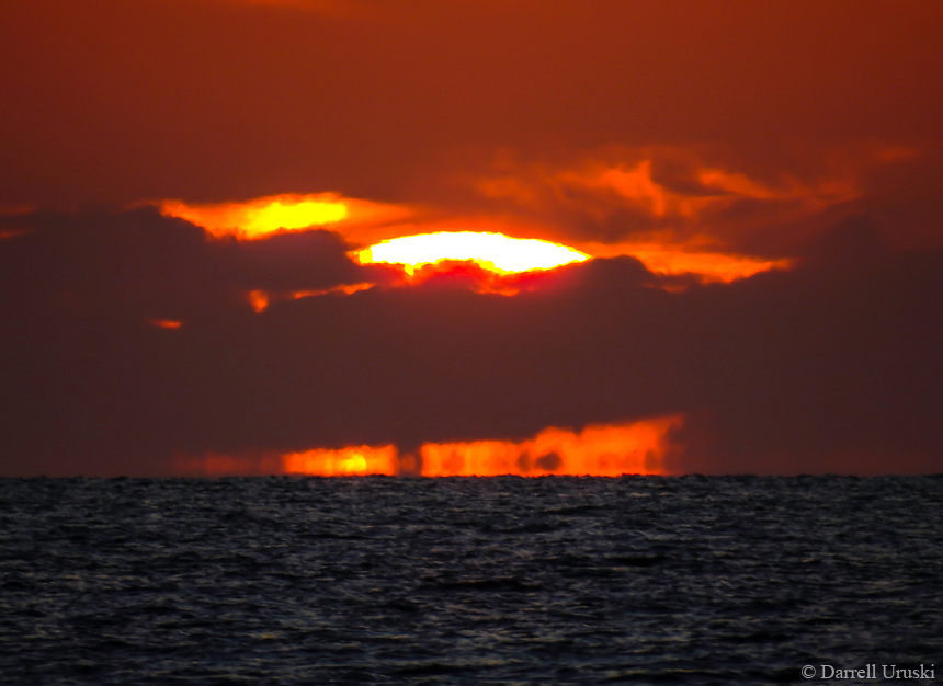 Sun in the Firmament of Heaven. <br />