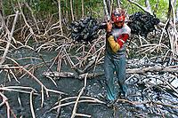 Catadores de carangueijo no delta do Parnaíba. Piauí. 2006. Foto de Ricardo Azoury.