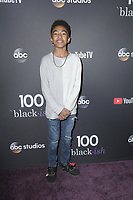 LOS ANGELES - NOV 10:  Miles Brown at the Black-ish 100th Episode Celebration at the Walt Disney Studios on November 10, 2018 in Burbank, CA