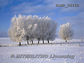 Marek, CHRISTMAS LANDSCAPES, WEIHNACHTEN WINTERLANDSCHAFTEN, NAVIDAD PAISAJES DE INVIERNO, photos+++++,PLMP0446Z,#xl#