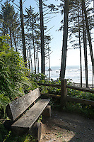 Scenic Lookout to the Coast in the Olympic Peninsula of the Pacific Northwest