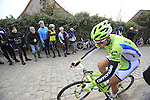 Peter Sagan (SVK) Cannondale Pro Cycling at the top of the cobbled climb of Paterberg during the 56th edition of the E3 Harelbeke, Belgium, 22nd  March 2013 (Photo by Eoin Clarke 2013)