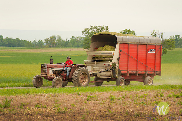 Franklin County, Pa. Farmer, tractor and hay wagon.