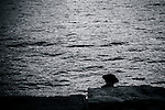Sitting on the rocks at Baranagaroo, Sydney, NSW, Australia