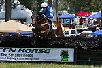 High Hope Steeple Chase 2012