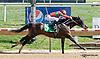 Protonico winning at Delaware Park on 9/7/13