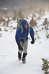 Single hiker (MR) dressed for the cold and wind, and prepared with mountaineering gear, in the krummholz near treeline, winter, Rocky Mountain National Park; blowing snow, February 2008, Colorado, USA, Rocky Mountains