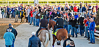 LOUISVILLE, KY - MAY 01: Fans and media line the pathway to the track as Justify, trained by Bob Baffert, makes his way to the track to exercise in preparation for the Kentucky Derby at Churchill Downs on May 1, 2018 in Louisville, Kentucky. (Photo by Scott Serio/Eclipse Sportswire/Getty Images)