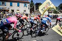 peloton cheered on by the excited roadside fans<br />  <br /> Stage 5: Saint-Dié-des-Vosges to Colmar (175km)<br /> 106th Tour de France 2019 (2.UWT)<br /> <br /> ©kramon