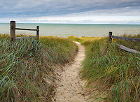 Port Crescent State Park, Michigan<br /> Beach path through dune grasses and fence line on the shore of Lake Huron