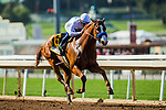 ARCADIA, CA - APRIL 07:  Mike Smith guides Justify #6 to a victory in the Santa Anita Derby at Santa Anita Park on April 07, 2018 in Arcadia, California.(Photo by Alex Evers/Eclipse Sportswire/Getty Images)