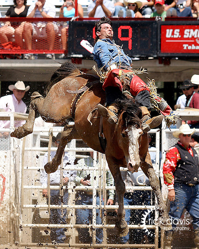 PRCA cowboy Forrest Bramwell scores a 70 point bareback bronc ride on the Harry Vold Rodeo Company bronc Sheep Tick at the 111th Cheyenne Frontier Days Rodeo on July 29, 2007 in Cheyenne, Wyoming.