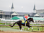 LOUISVILLE, KENTUCKY - MAY 02: Win Win Win, trained by Michael Trombetta, exercises in preparation for the Kentucky Derby at Churchill Downs in Louisville, Kentucky on May 2, 2019. Scott Serio/Eclipse Sportswire/CSM