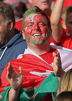 "Pictured: A Wales fan at the Cardiff City Stadium Friday 08 July 2016<br /> Re: Thousands of fans are expected to line the streets to welcome back the Wales national team. An open top bus will parade through Cardiff, from Cardiff Castle to Cardiff City Stadium where the Manic Street Preachers will play to 33,000 people.<br /> The parade comes after Wales lost 2-0 to Portugal in the semi-final on Wednesday, with their historic run hailed as a performance which has ""changed Welsh football forever""."