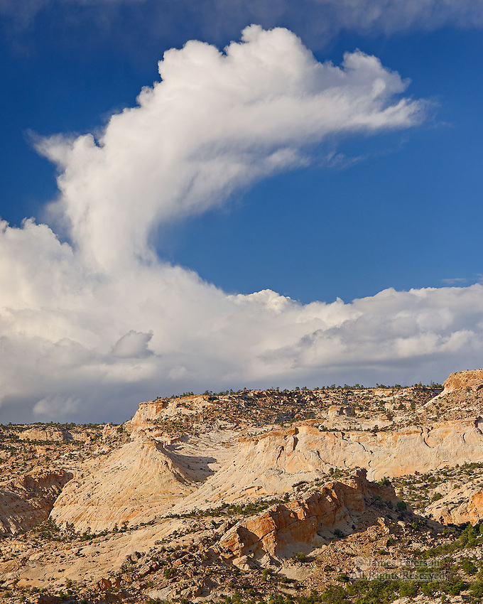 Gooseneck Cloud over Escalante Canyon, Utah