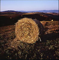 A hay bail sits in a field in morning sunlight in Saline di Volterra, Italy in the summer of 2007.