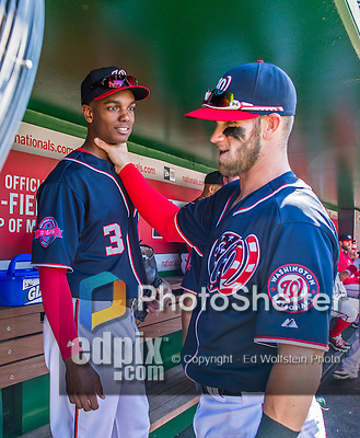 23 May 2015: Washington Nationals outfielder Michael Taylor is clowned around with by Bryce Harper in the dugout prior to a game against the Philadelphia Phillies at Nationals Park in Washington, DC. The Phillies defeated the Nationals 8-1 in the second game of their 3-game weekend series. Mandatory Credit: Ed Wolfstein Photo *** RAW (NEF) Image File Available ***