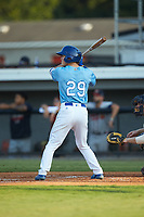 Mikey Filia (29) of the Burlington Royals at bat against the Danville Braves at Burlington Athletic Stadium on August 9, 2019 in Burlington, North Carolina. The Royals defeated the Braves 6-0. (Brian Westerholt/Four Seam Images)