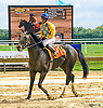 Lake Creek winning at Delaware Park on 9/28/16