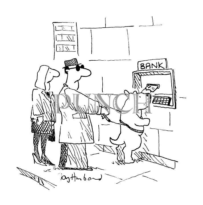 (guide dog using cashpoint on behalf of blind owner)