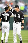 Chicago White Sox 2010