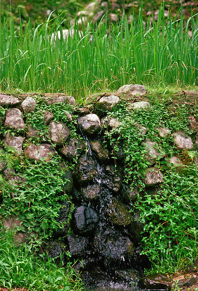 Rice Terrace Irrigation Channel, Philippines