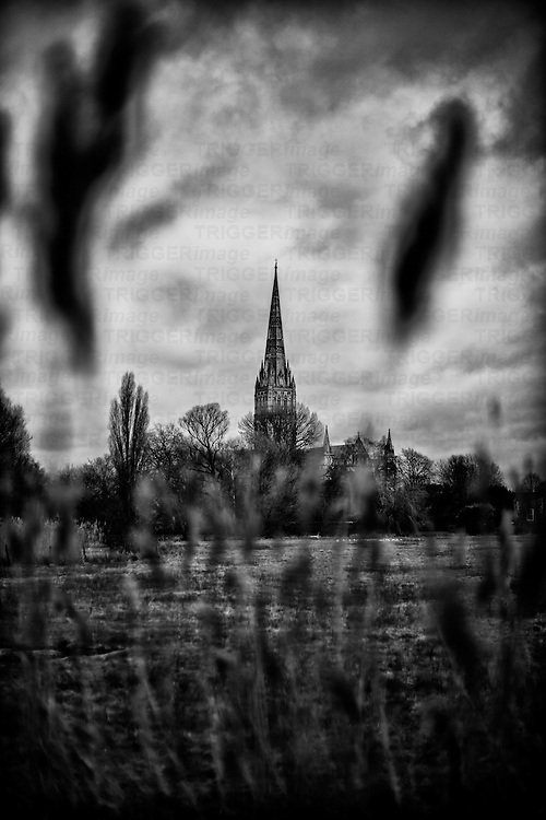 Distant view of Salisbury Cathedral across fields