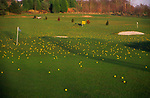A3AAP3 Golf course driving range with yellow balls over the fairway and greens